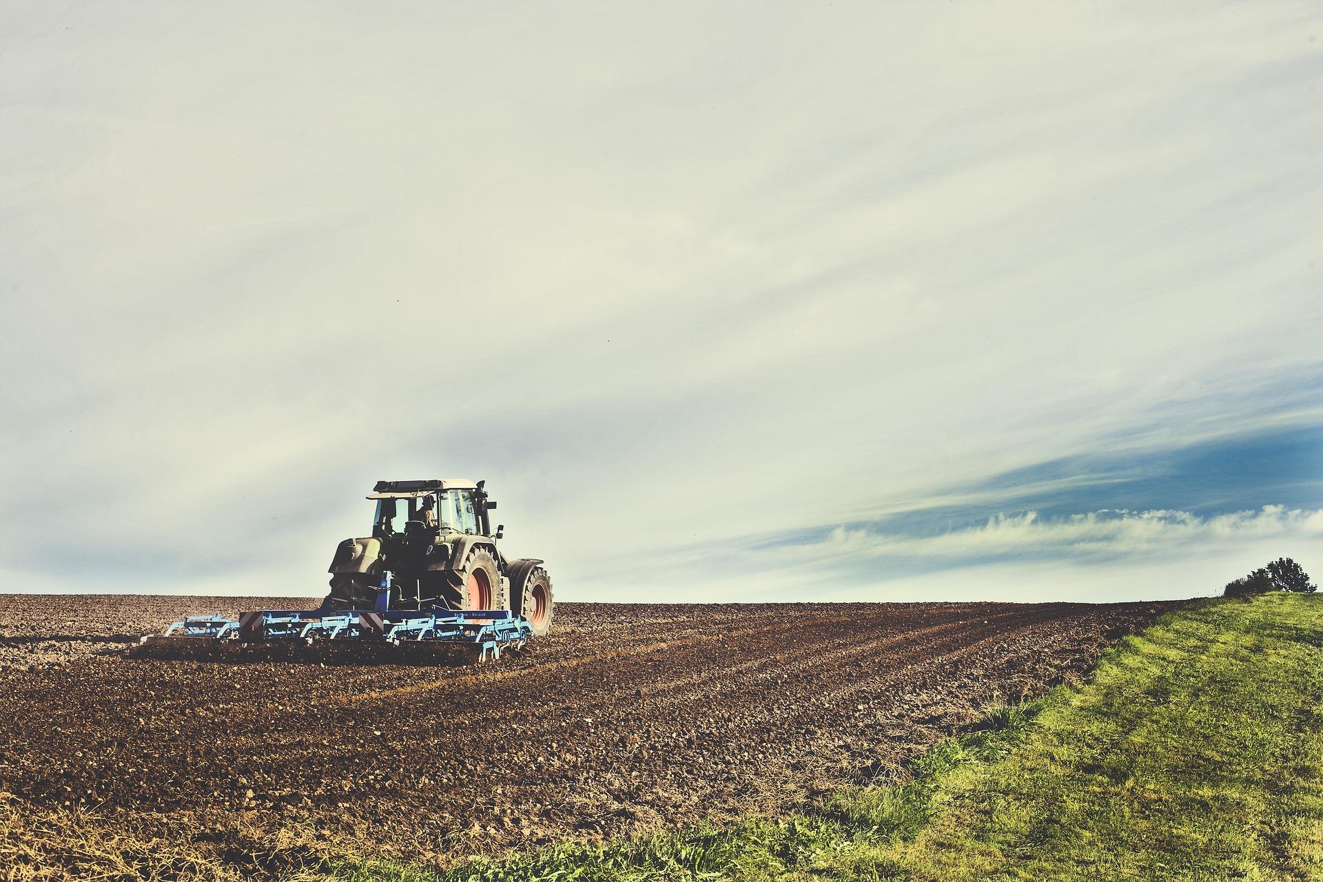 Mayor actividad en el Sector Rural