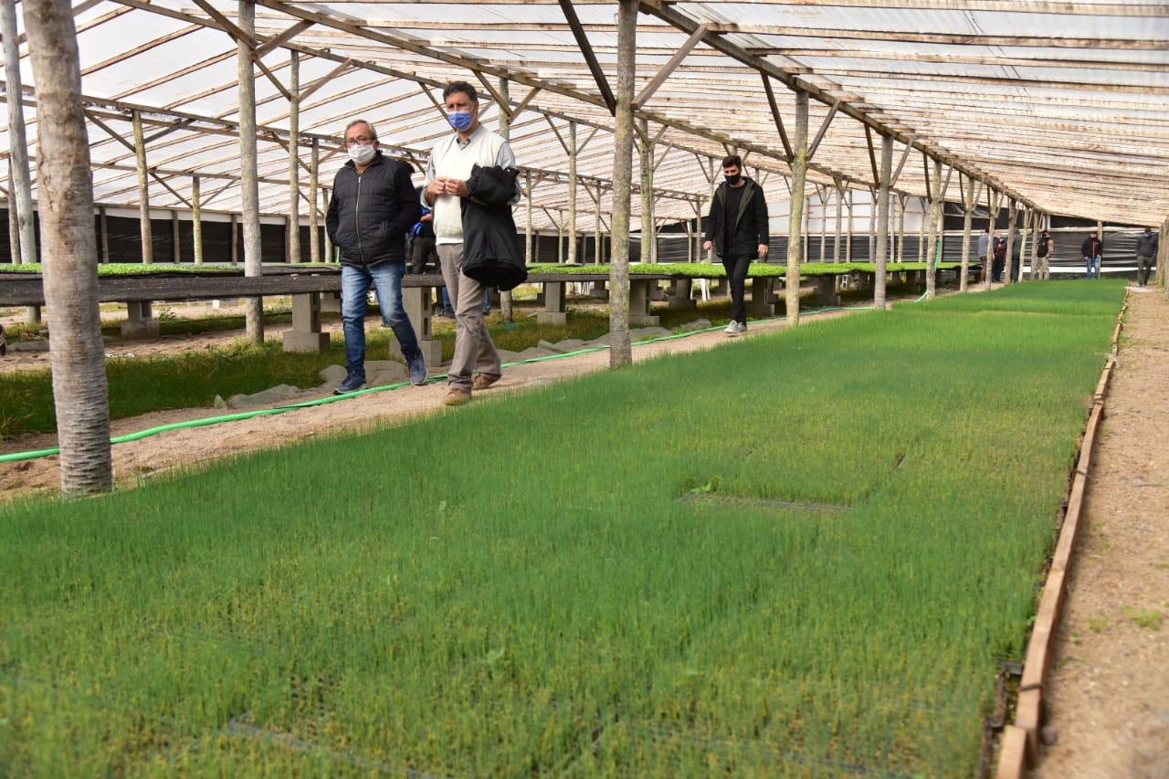 Rosso recorrió el Mercado de Abasto en donde avanza la producción hortícola para abastecer al cinturón verde local