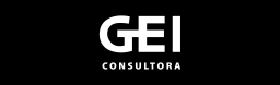 GEI consultora